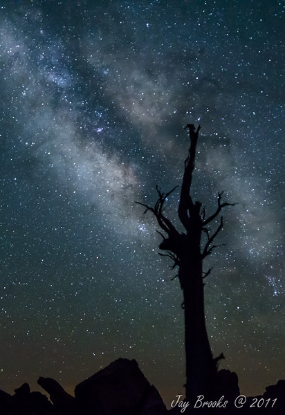 Night Sentry Under the Milky Way - Eastern Utah - Jay Brooks - July 2011