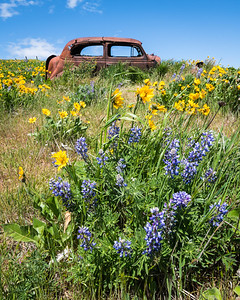 Rusted Car of Dalles Mountain Ranch