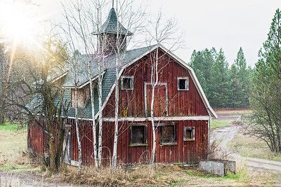 Red Barn Beauty