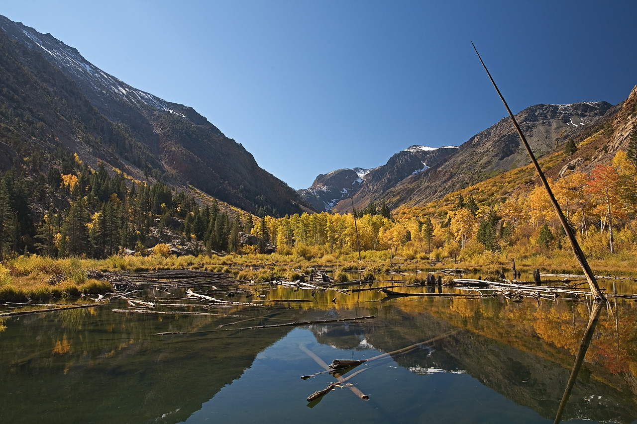 Fall Colors at Lundy Canyon II