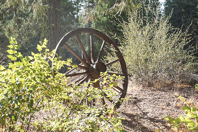 This is not in the Eastern Sierra, but it was along the way to our adventure.  We stopped at the ranger station near Pinecrest, so I had to take my regular wagon wheel photo.