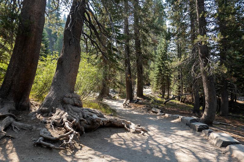 Devil Postpile National Monument, Mammoth Lakes, California