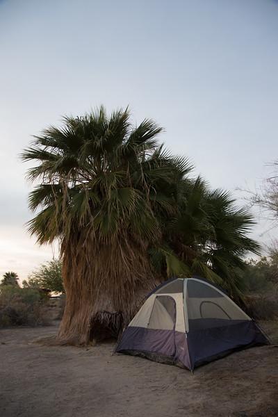 Camp Site, Salton Sea, Ca
