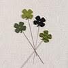 20140210Valentine's & Saint Patrick's31