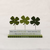 20140210Valentine's & Saint Patrick's55