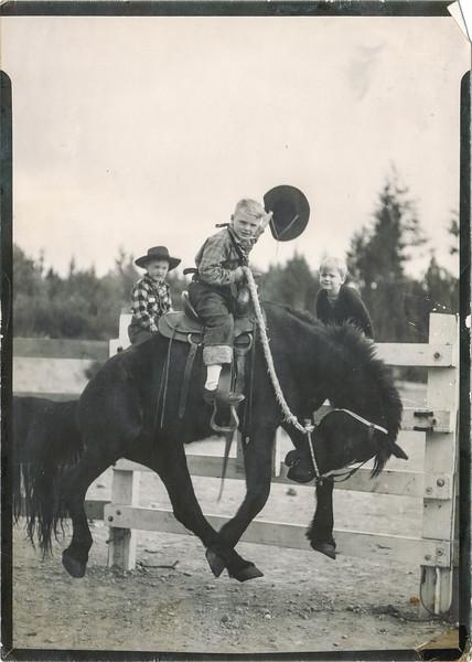 Lee Jr Cowboy