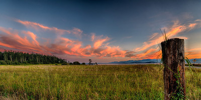 Evening on Ebey's Prairie