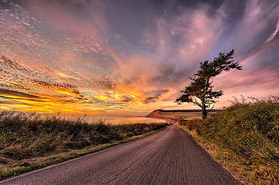 The Road to Ebey's Landing II