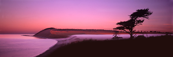 Ebey's Dawn: fog rolls from Admiralty Inlet to Ebey's Prairie on Whidbey Island. (Original shot on transparency film with Hasselblad XPan)