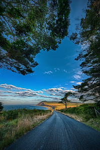 Road to Ebey's Harvest