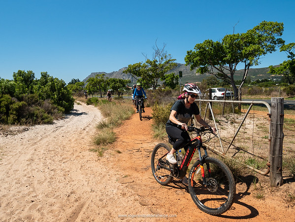 The Giant hard tail ebikes were in excellent condition and more than up to the task of riding the trails.