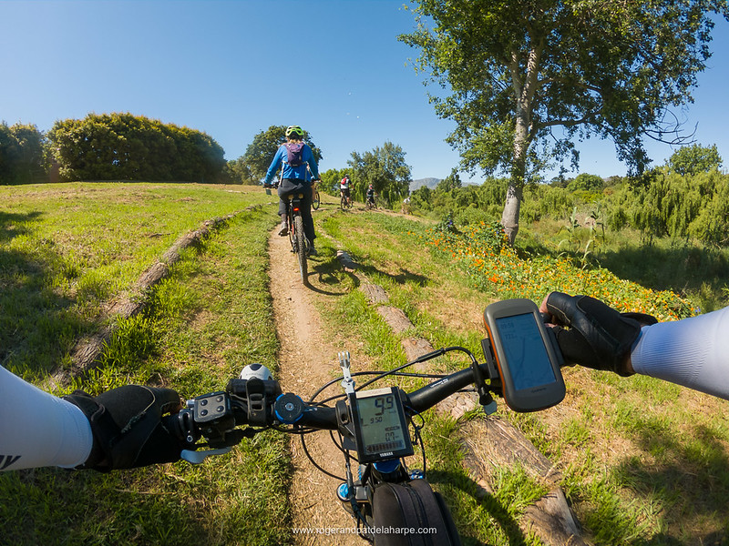 The single tracks on the eBiking (mountain biking) tour with eBike Cape Town were generally pretty good - not very technical at all.