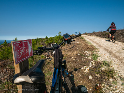 Mountain Biking on the Harkerville Red Route. Plettenberg Bay Garden Route. Western Cape. South Africa