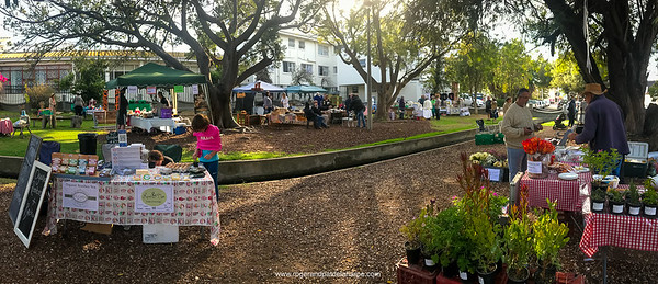 The Saturday Morning Market. Delightful! And the breakfast rolls at the green gazebo in the background are R20.00!