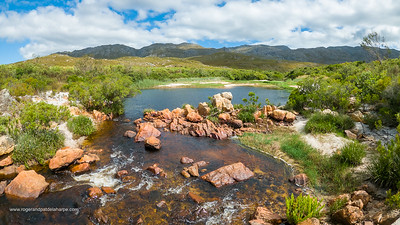Mountain Biking. Hermanus, Overberg. Western Cape. South Africa