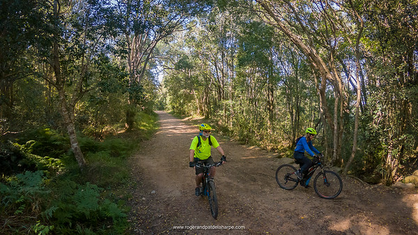 Much of the route is made up of these very easy to ride forest roads