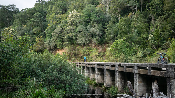 The old bridge across the Storms River set amongst wonderful indigenous forests.