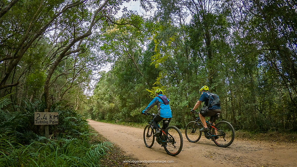 The start of the Storms River Cycle Ride follows the old pass down into the valley through the most beautiful forests.