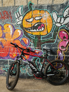 The Scott bikes that we hired from Bcyclet in Geneva against some rather interesting graffiti. Switzerland