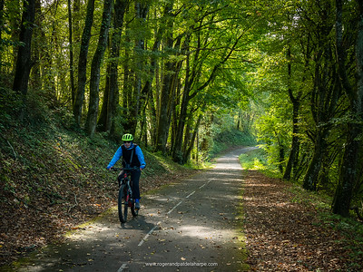 Pat riding through of the forests along the ViaRhôna. Near Belly, France