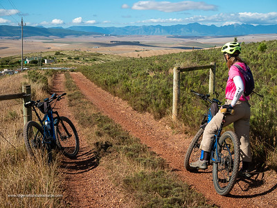 There are plenty of out and back side roads on the route that can be explored.