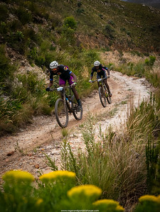 Mountain bikers on the Old Houwhoek Pass near Botriver, part of the 2019 Wines 2 Whales mountin biking event. Western Cape. South Africa.