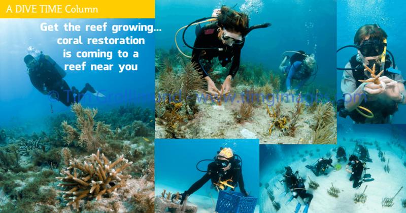 FB-Ad-Get-reef-growing