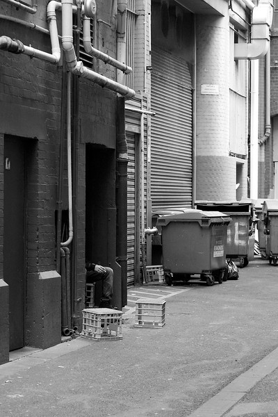Alleyway Inhabitants