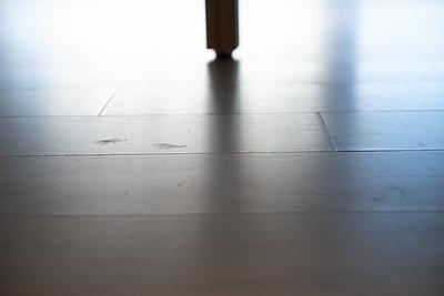 1210_Floors-21