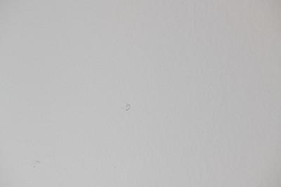 1210_Walls-33