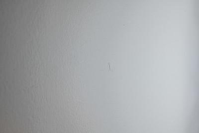 1210_Walls-1