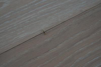 1216_Floors-3