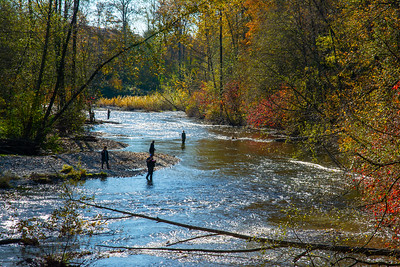 JW2_5968_autumn-river-fishing