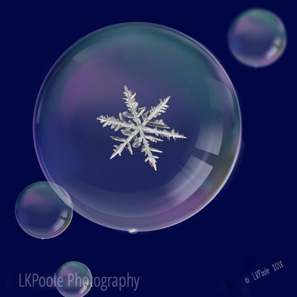 Snowflake in Bubble