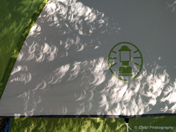 Sun Shadows on tent