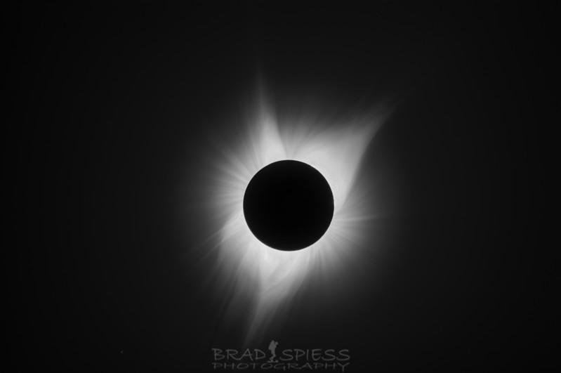 Eclipse Black and White