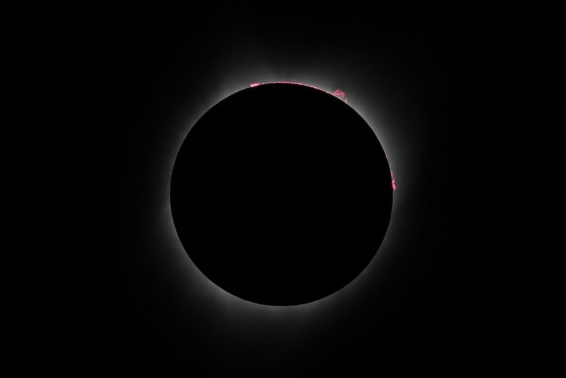 2017 Total Solar Eclipse with solar eruptions visible