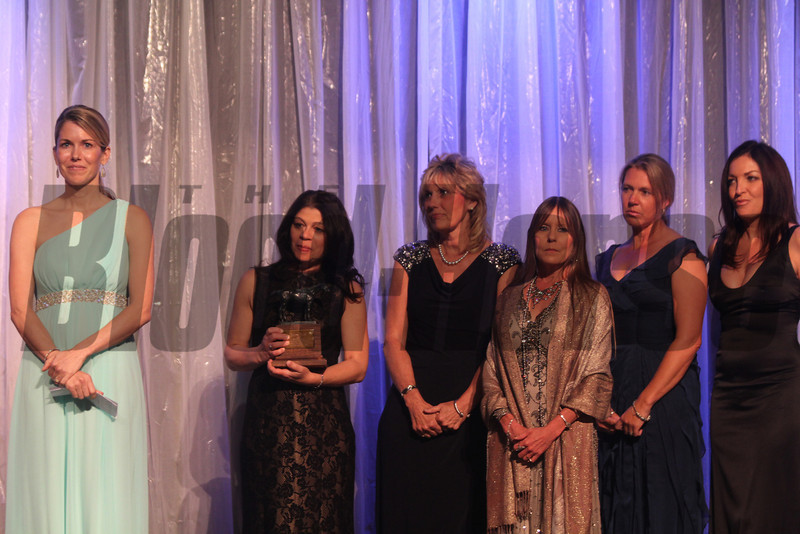 Anna Ford and company of Aftercare Alliance,  2013 Eclipse winners