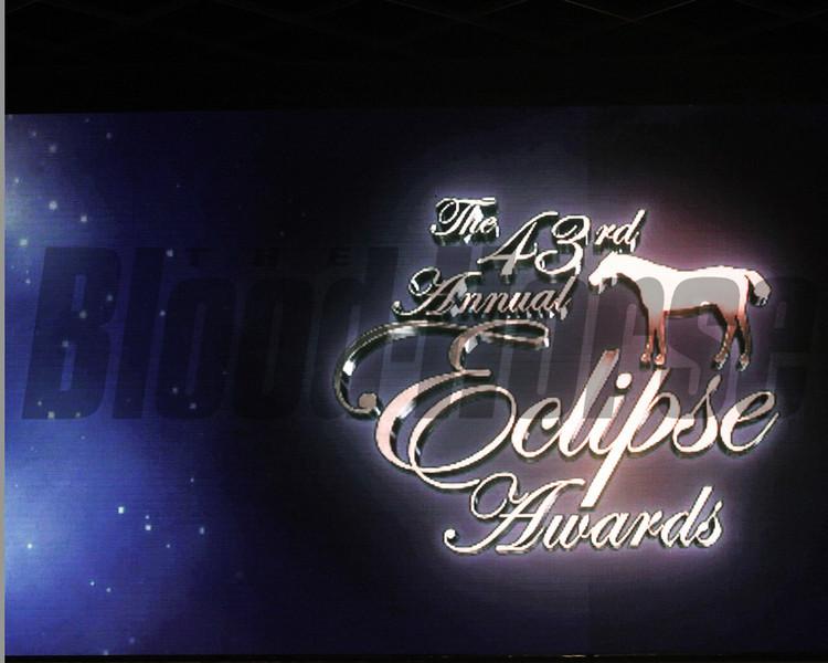 Scenics, 2013 Eclipse winners
