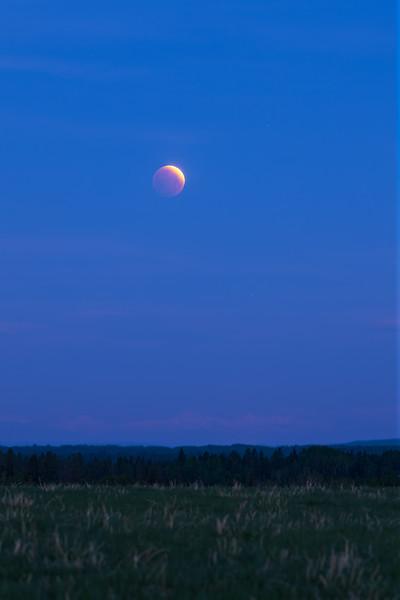 Partial Lunar Eclipse in Twilight (Portrait Version)