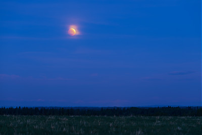Red Moon in Blue Twilight