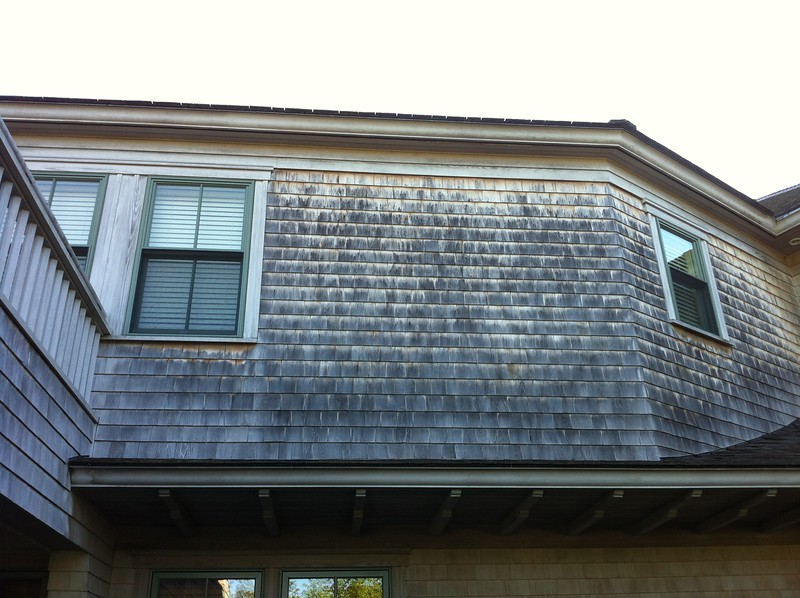[BEFORE] 7 Years of Mildew