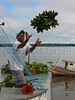 A worker loads bananas onto a riverboat during the weekly market day in a small town in the Amazonian state of Para. (Australfoto/Douglas Engle)