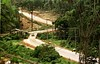 A car passes a newly opened road at the Petrobras Urucu oil well in the Amazon.(Douglas Engle/Australfoto)