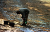 A worker cleans up an oil-blackened beach of the Guanabara Bay in Rio de Janeiro, Brazil,  Sunday, January 23, 2000. A pipeline at the Reduc refinery on the bay spewed 1.3 million liters (338,000 gallons) of crude oil into the bay, according to Petrobras, the government-owned oil company.(Douglas Engle/Australfoto)