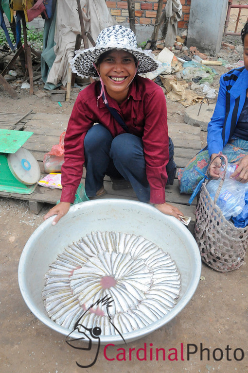 Khmer woman selling her locally caught fish from the Tonle Sap Lake near Angkor Temple Complex, Siem Reap, Cambodia, Asia