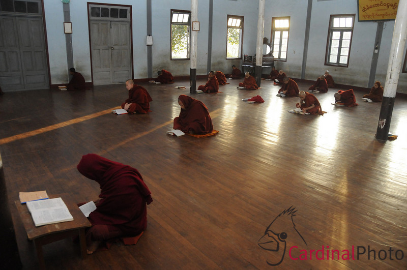 Monks in Prayer Robes at Evening Prayers at Theravada Buddhist Monastery in Kalaw, Shan State near Heho, Myanmar, Burma, Southeast Asia