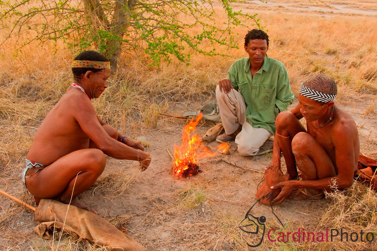 Kalahari Bushmen telling stories while they build a fire using the local grass and sticks. The Bushmen have relied on stories as the way to transfer their extensive and vital knowledge of their environment for tens of thousands of years, almost unchanged. Only the modern garb on the youngest bushman gives away the century.
