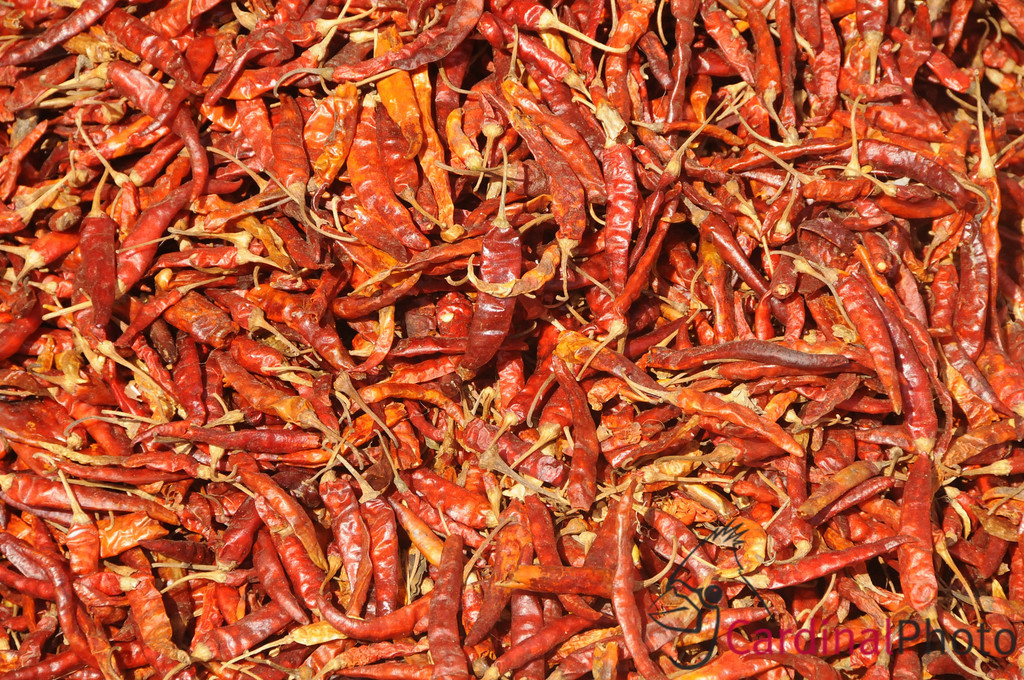 Red Chili Peppers on display at the local farmers produce market in Twante Village hard hit by Cyclone Nargis near Yangon and Rakhine Areas, Myanmar, Burma, Southeast Asia