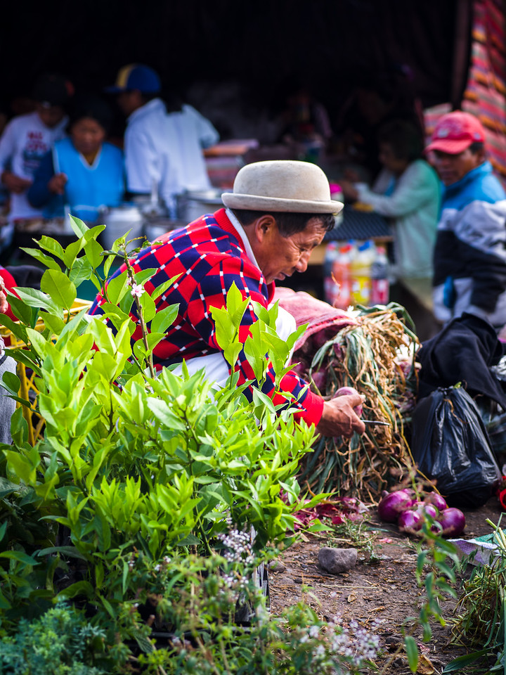 Otavalo Market - A traditional Andean market overun by tourists by 9am. We got there at 7am.